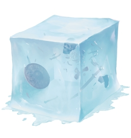 http://forgottenrealms.wikia.com/wiki/Gelatinous_cube